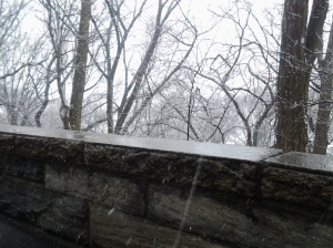 Vernal Equinox NYC Snow 03 20 2015