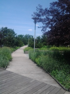 Hudson River Park Path (07 2015)