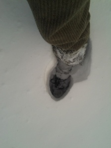 Snow: Knee Deep!