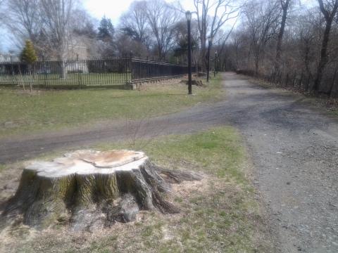 Van Cortlandt Park Massacre NYC Spring 2016